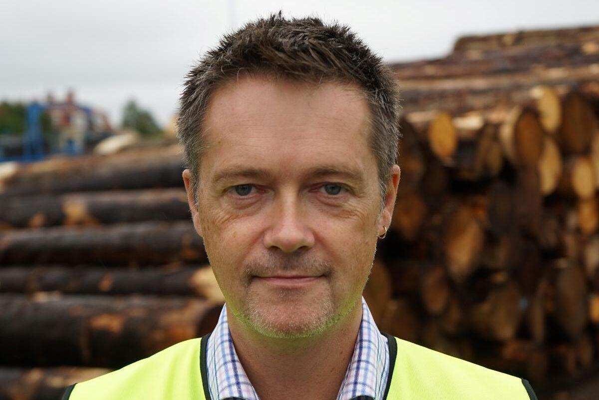 """""""Problemet är inte bara att det finns ett par ruttna äpplen inom skogsvårdssektorn, det är ett ruttet träd"""", säger Per-Olof Sjöö."""