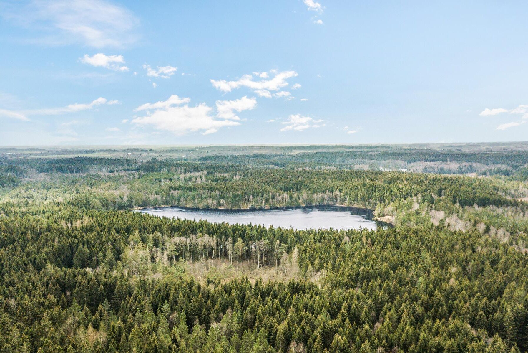 Stora Enso säljer 5200 hektar skogsmark i Halland.