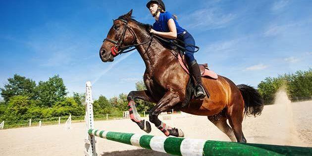 Även om du försöker att inte verka rädd när du till exempel ska hoppa känner hästen det ändå via kemiska signaler.