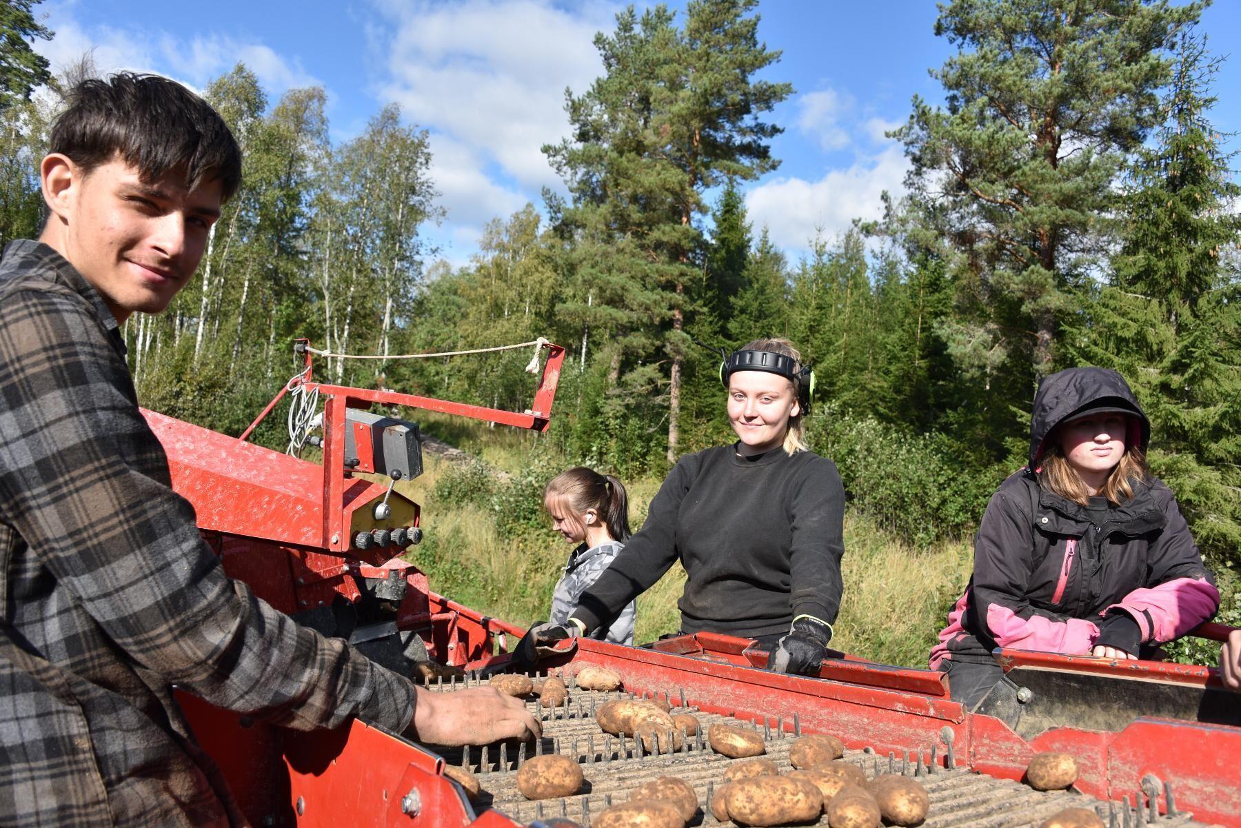 Sebastian Pålsson, Mathilda Eriksson, Ida Isaksson och Mimmi Andersson.
