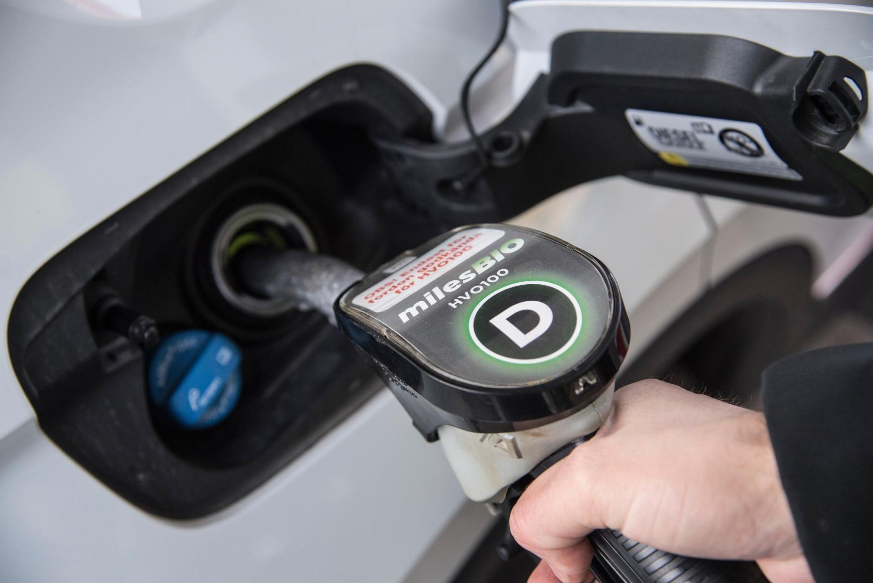 Från och med 1 augusti 2021 ska inblandningen av biodrivmedel öka i svenskt fordonsbränsle och den 1 januari 2022 förbjuds bränslen som baseras på palmolja. Arkivbild.