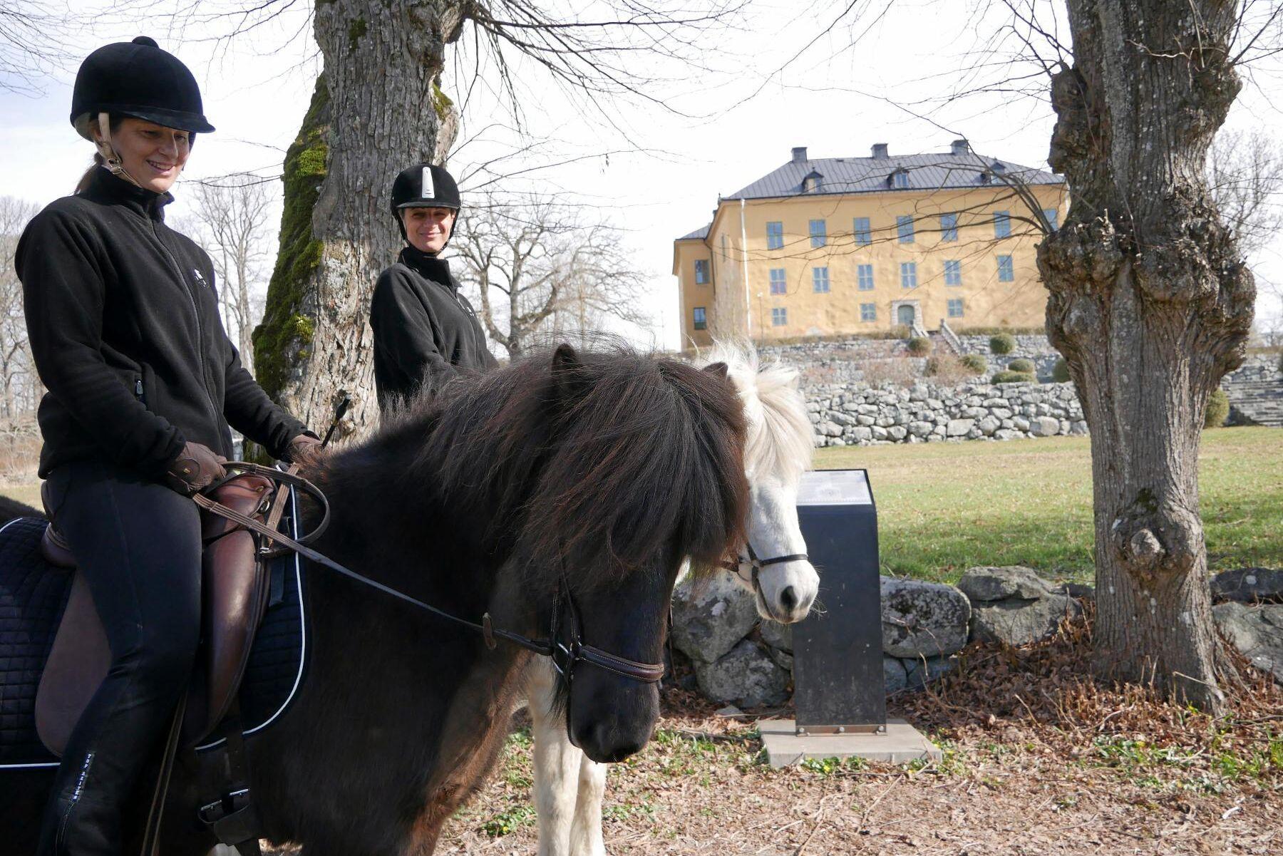 Wenngarns slottspark är i barockstil och här är Islandshästarna alltid välkomna.