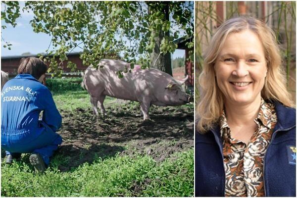 Kristin af Malmborg är generalsekreterare på Svenska Blå Stjärnan.