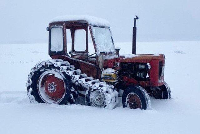 BM Volvo Buster med halvband går fram bra i snö. Bild från Håkan Dalen.