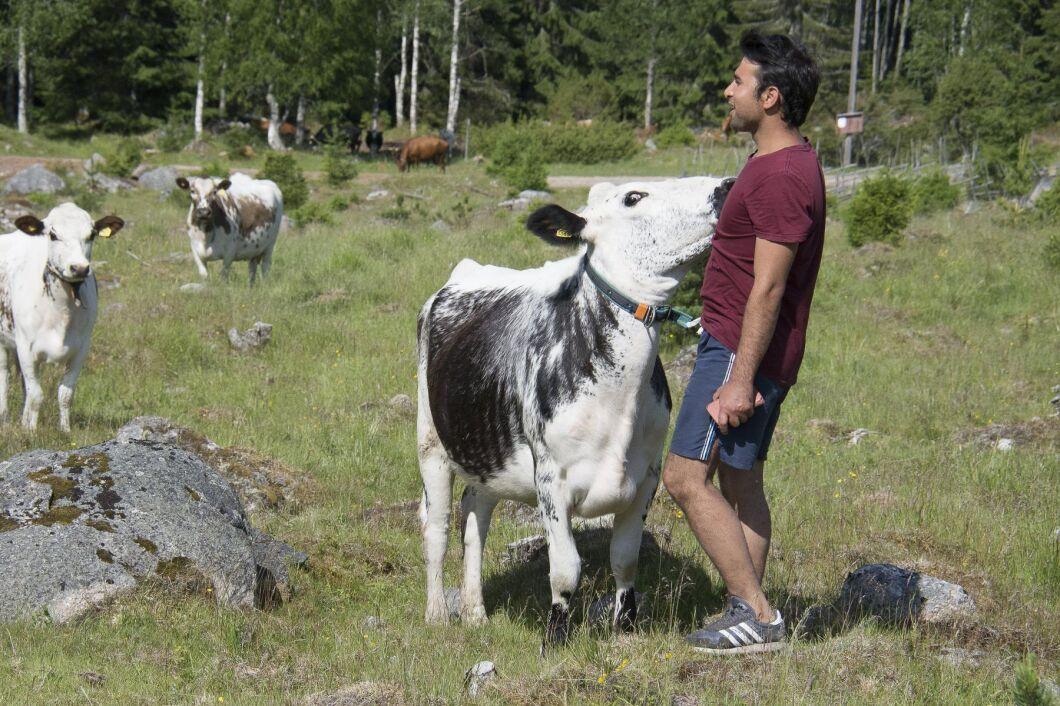 Efter ATL:s artikel om Sveriges yngste fbodbrukare Baqer Mosawi har tusentals engagerat sig för att han ska få stanna i landet.