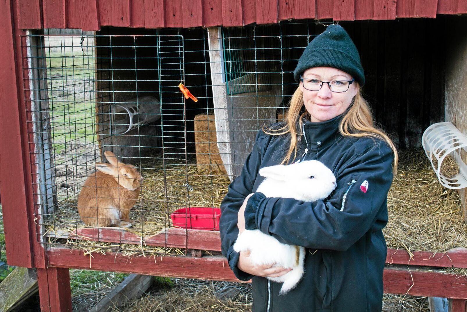 Malin Sundmark driver kaninköttsgården Lisasgårdens Kaniner. Bilden är tagen vid ett tidigare tillfälle.