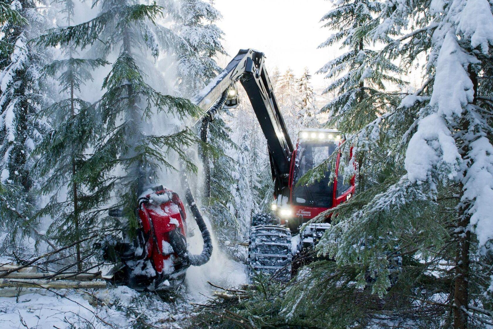 Sveriges regering, riksdag och skogsbransch har vänt sig emot EU-kommissionens förslag och anser att konventionellt skogsbruk ska betraktas som hållbart.