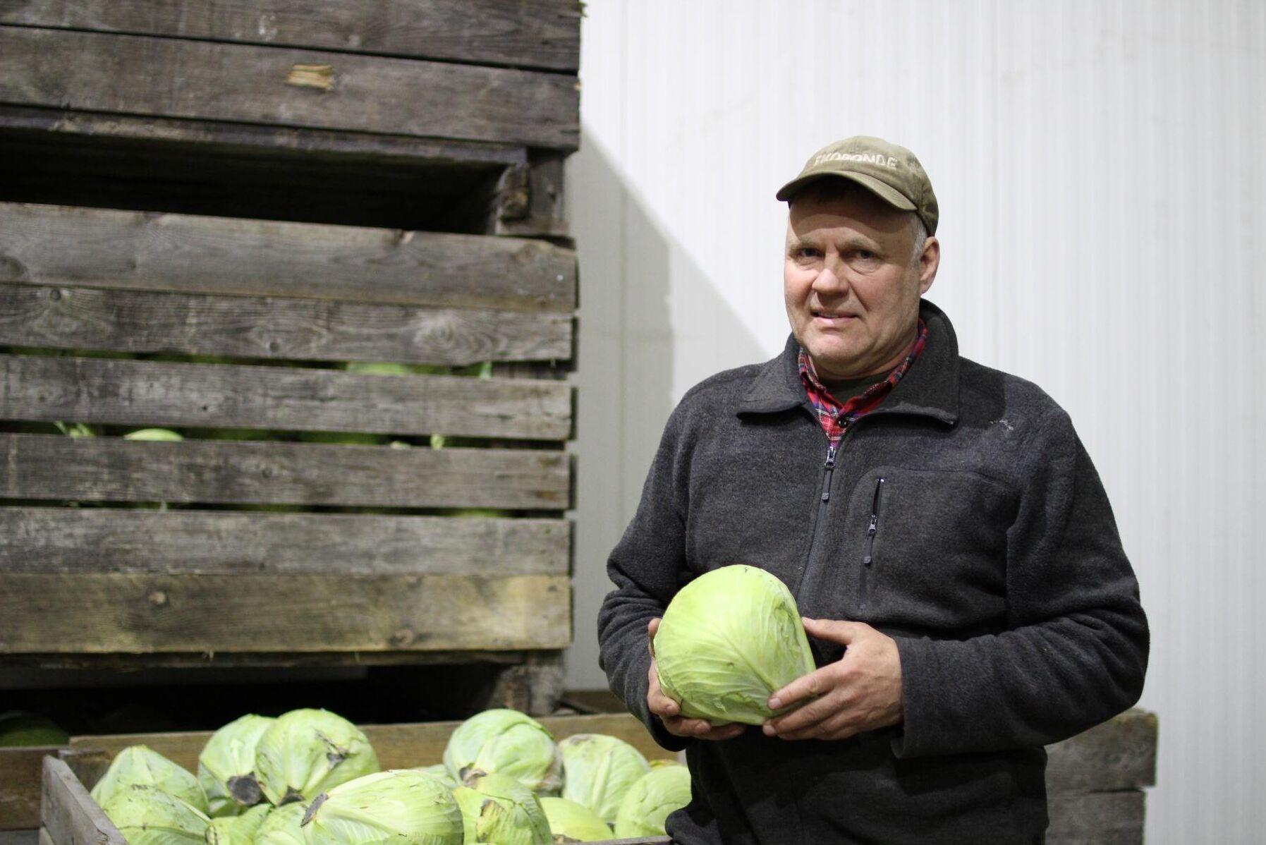 """""""Ett kilo frö kan bli till 500 ton vitkål. Det är nästan magi"""", säger Anders Östlund."""