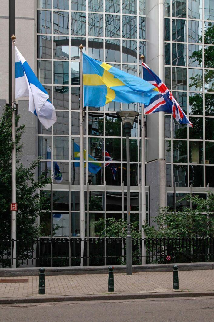 Den 17 januari röstar EU-parlamentet om förnybartdirektivet. Sverige och Finland försöker gemensamt att påverka EU-parlamentet.