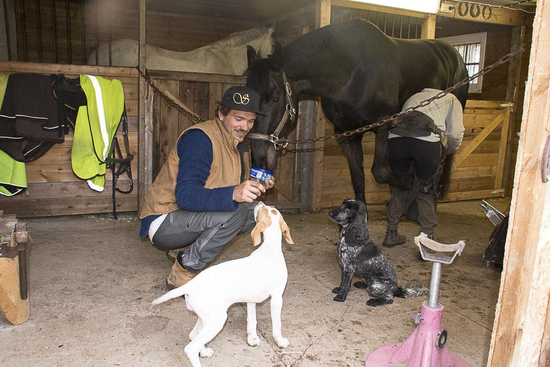 Hela familjen hjälper till när Irma Lennartsson skor egna hopphästen Chaccocool. Oskar Öhrström och Märtha hjälps år med inskolningen av valpen Tjorven.
