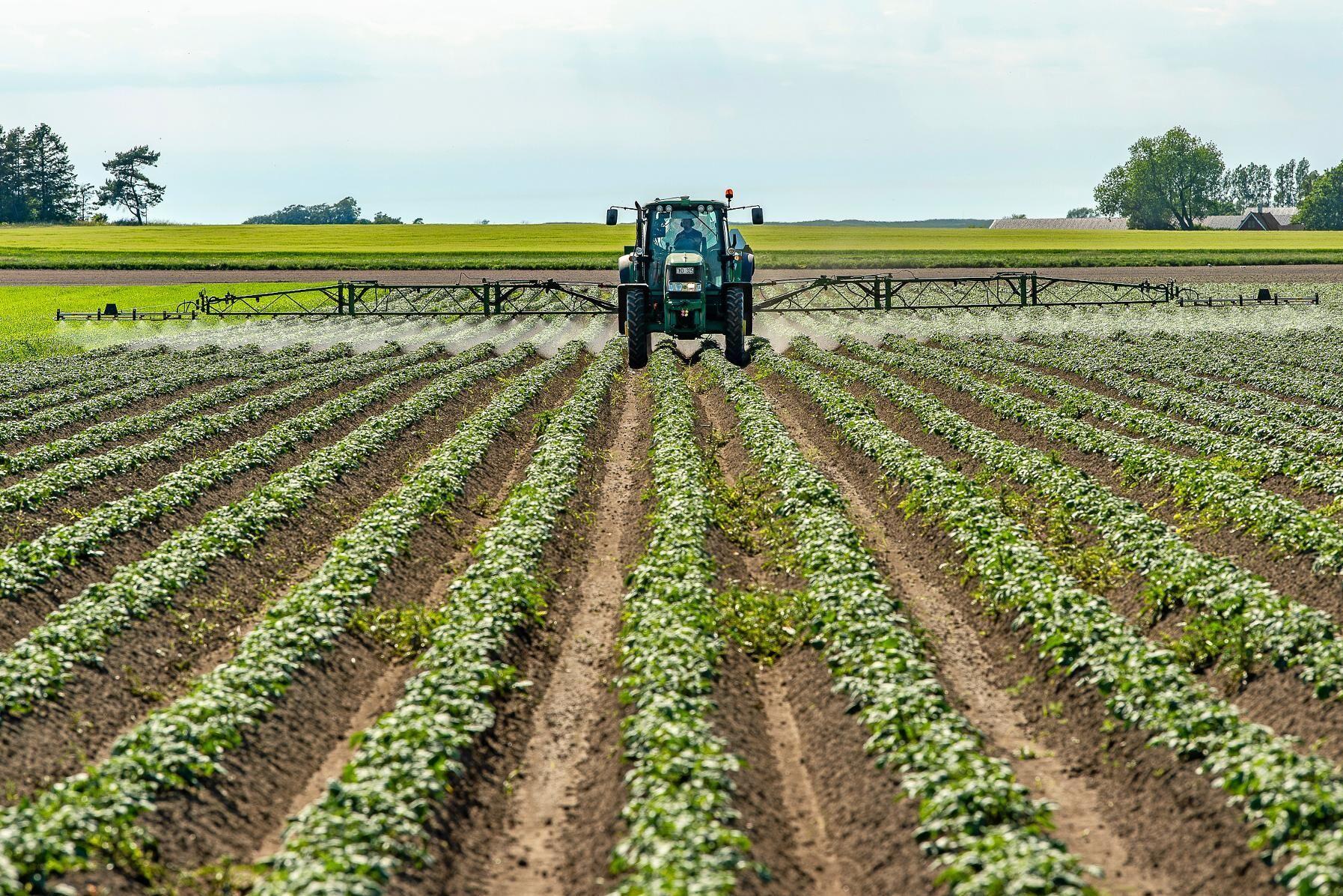 Många av de växtskyddsmedel som säljs i Sverige lever upp till kraven i lagstiftningen. Arkivbild.