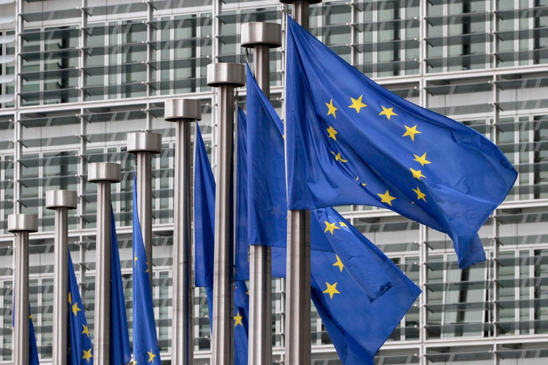 EU:s skogsstrategi riskerar att överföra de delar av skogspolitiken som Sverige i dag styr över till att avgöras i Bryssel.
