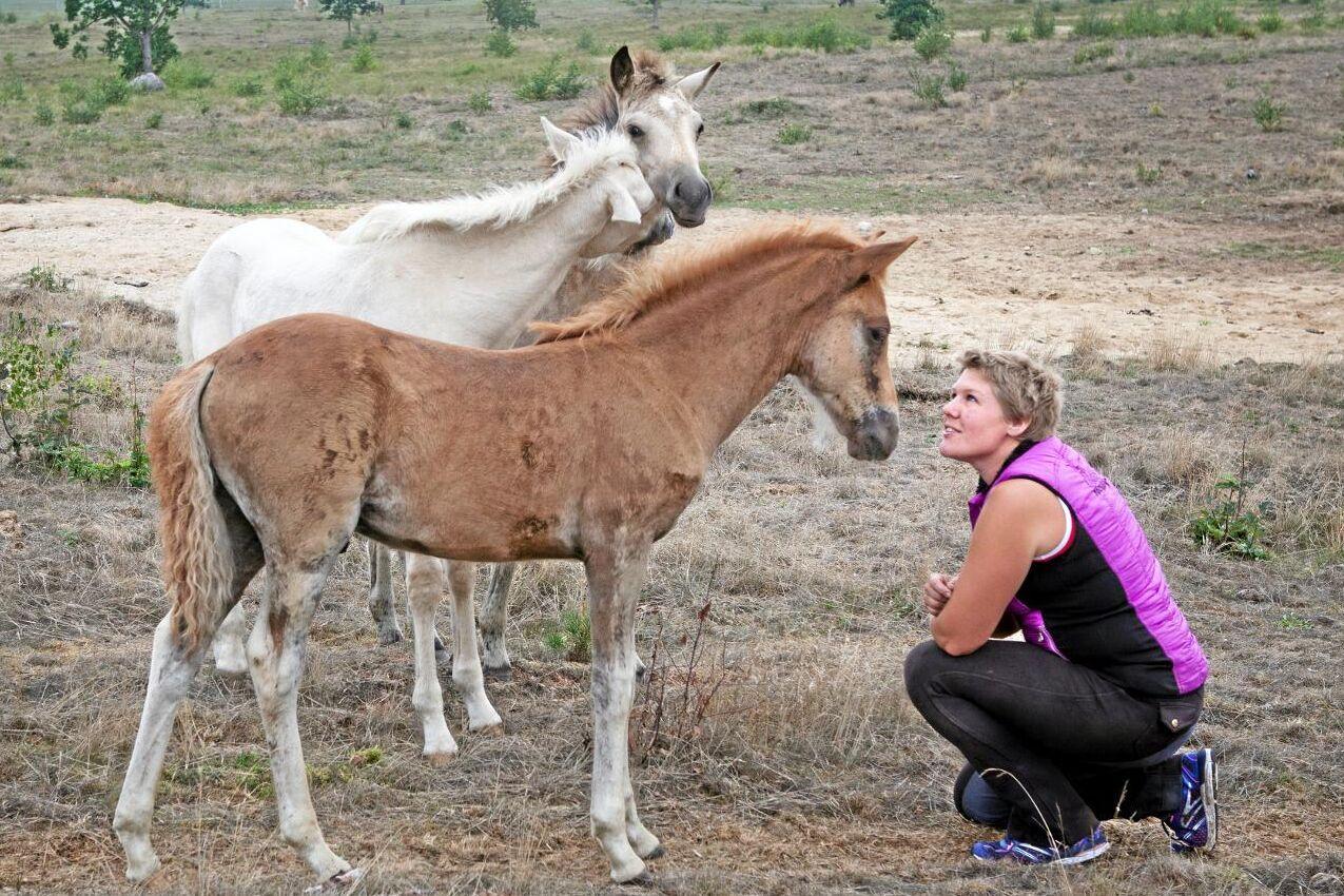 Alice Akkermann tittar till aegidienbergerfölen som föddes i maj.