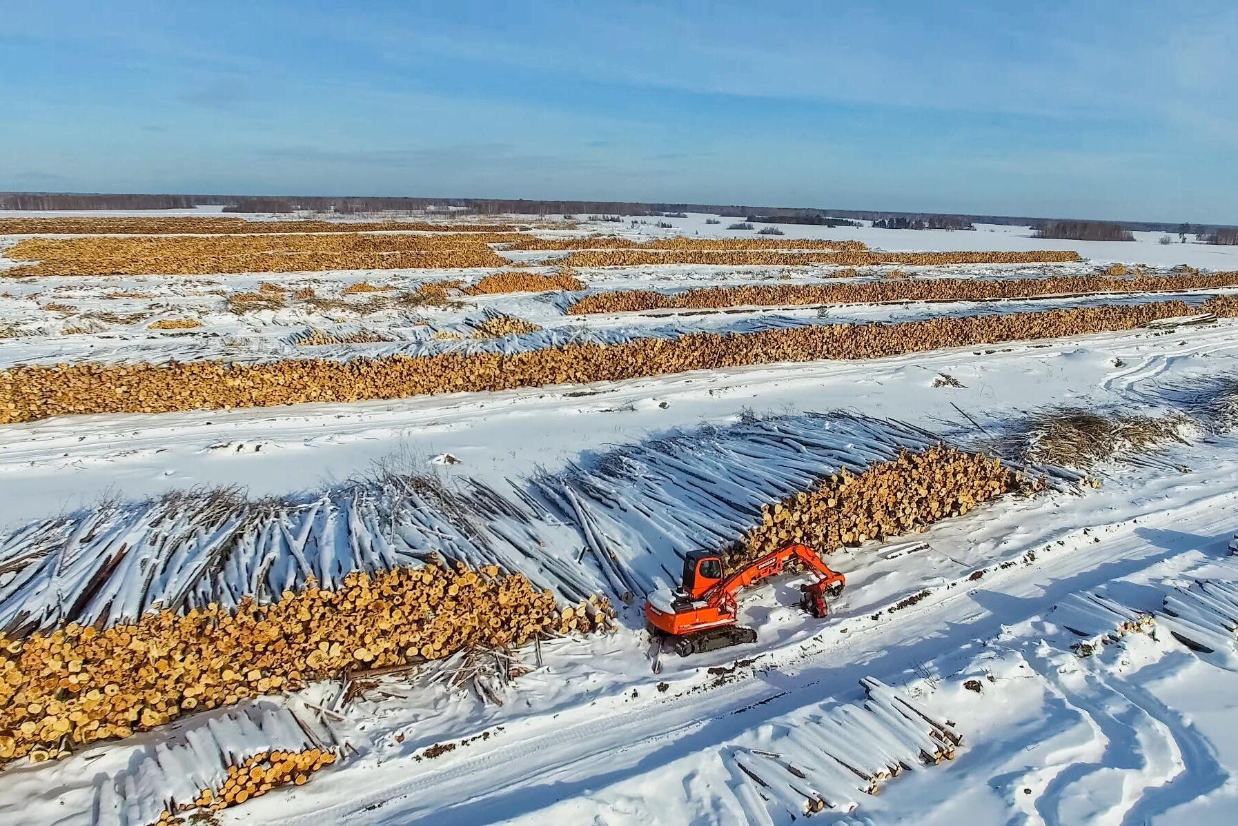 Rysslands planer på att minska exporten av rundvirke kan få effekter även för Sverige (bild från virkesupplag i Sibirien).