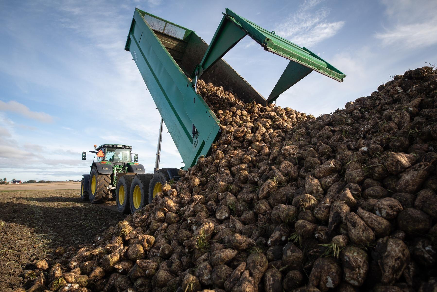 Betkampanjen riskerar att förlängas efter nya problem vid sockerbruket i Örtofta.