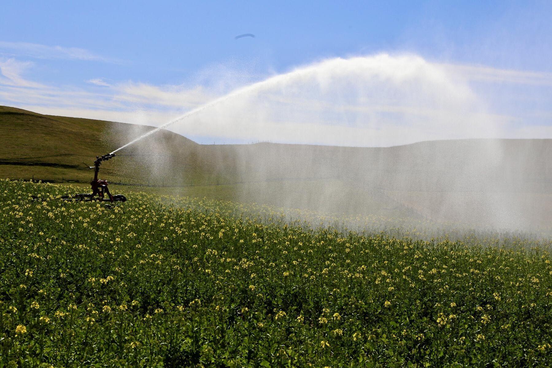 Klimatkrisen gör möjlighet till bevattning allt viktigare för jordbruket. Arkivbild.