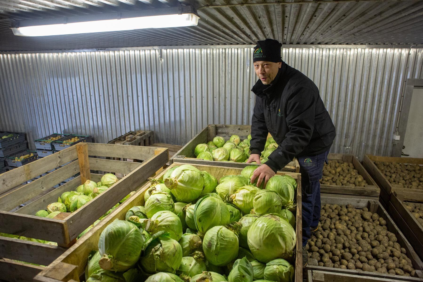Fredrik Andersson på Dingle lantbruk, en av de lokala producenter som har avtal med Munkedals kommun.