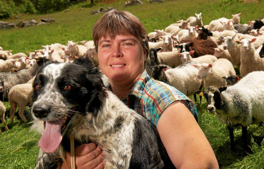 Gudrun Haglund-Eriksson har lång erfarenhet av arbetet med lammproduktion.