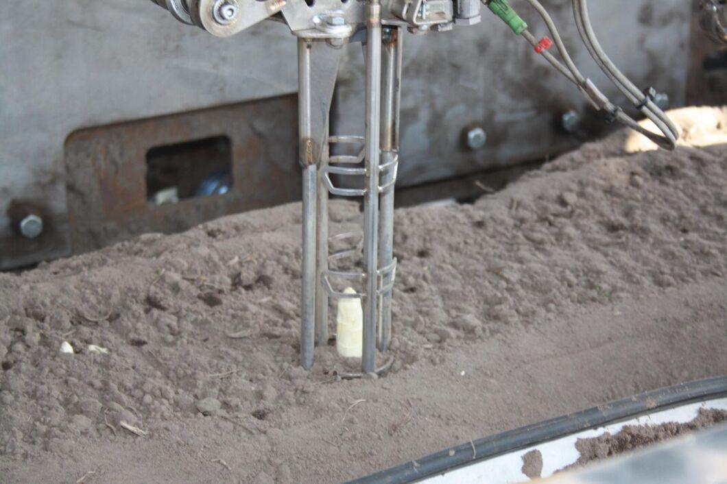 Roboten ska klara av att hitta den åtråvärda sparrisen även under jord.