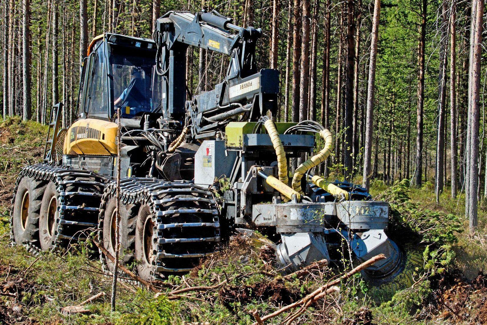 Markberedning är en flaskhals i skogen. Dålig lönsamhet är en av faktorerna som spelar in, menar Erik Viklund, skogsvårdschef på Mellanskog.