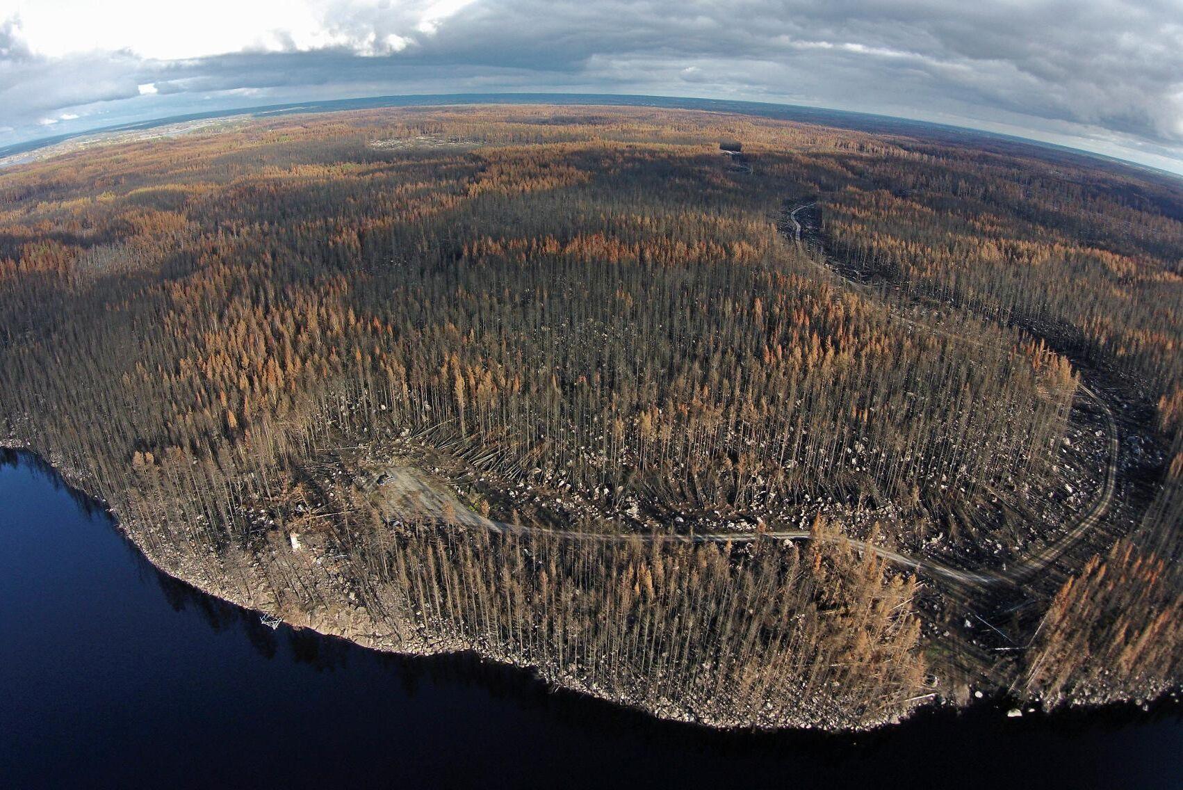 Skogsbranden som härjade i Västmanland 2014 omfattade mer än 13000 hektar.