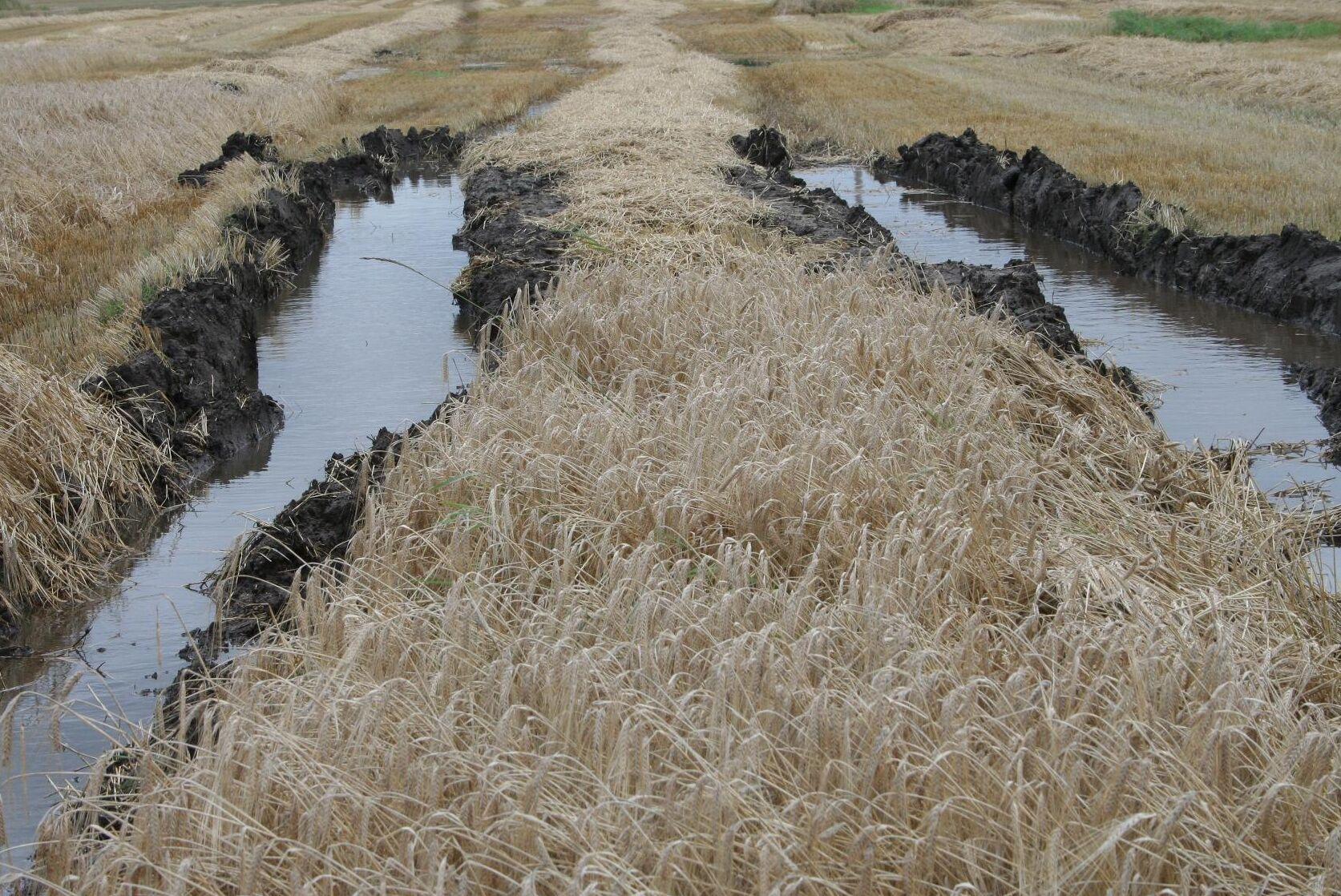 Ovanligt många varningar för höga vattenflöden.
