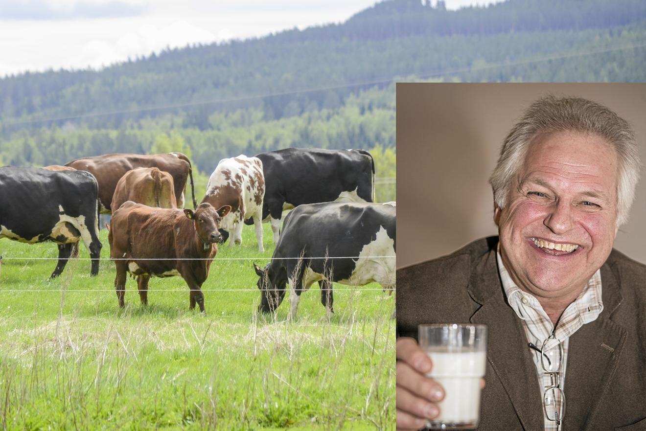 Gefleortens ordförande Thomas Lundgren.