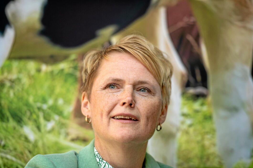 Anna-Karin Hatt (arkivbild).