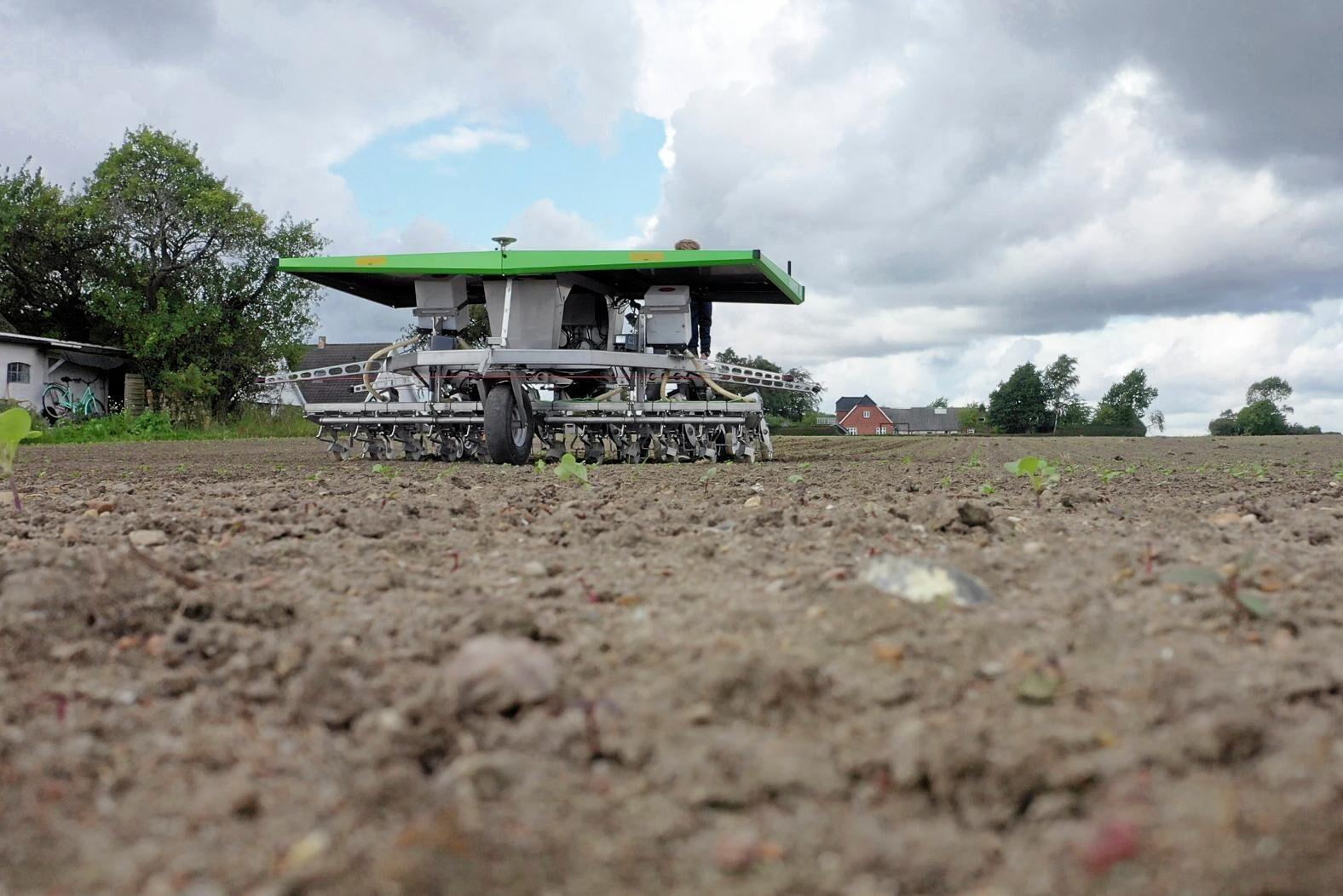 Stora Juleboda blir en av de första i Europa som investerar i den nya så- och radrensningsmaskinen Farmdroid.