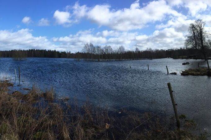 Sedan bilden togs har vattenståndet på Malin Holmquists marker blivit så högt att det inte längre går att se staketstolparna som här syns i bild.