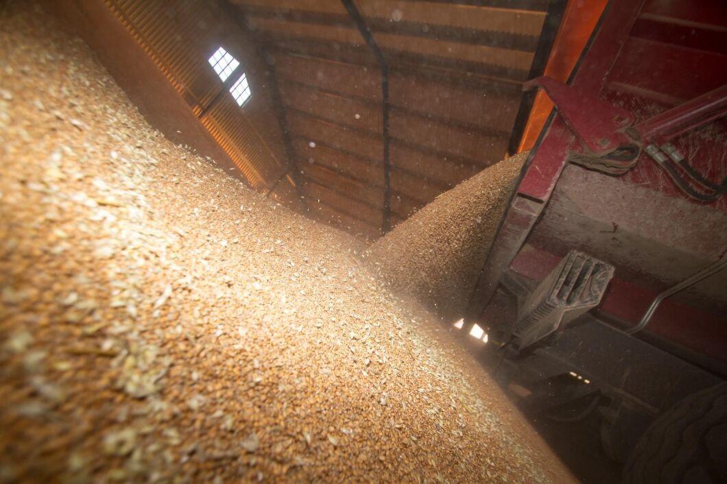 Uppgång för vetepriset (arkivbild).