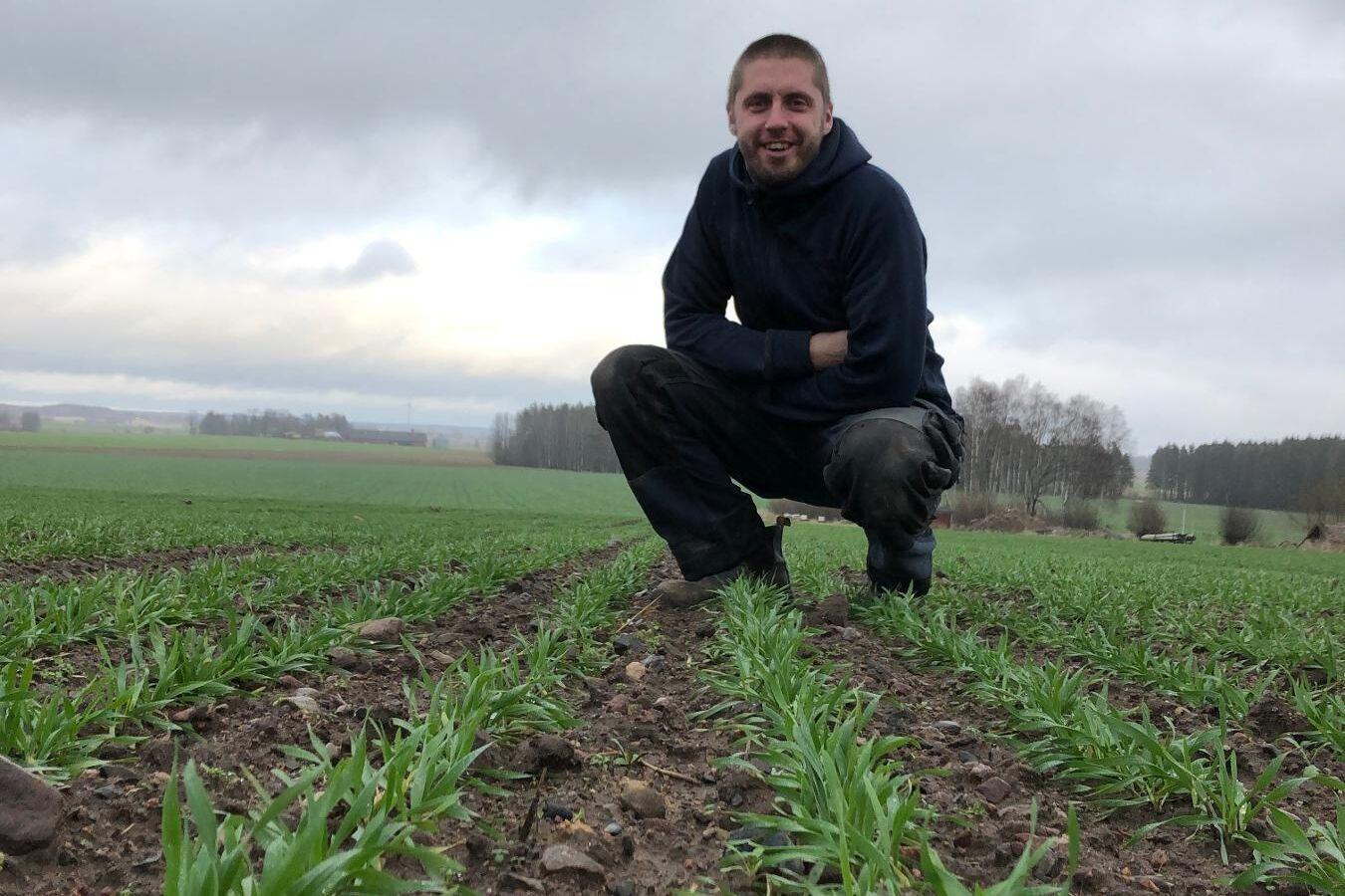 Adam Paulsson bedriver ekologisk växtodling på 150 hektar i Sjökumla utanför Motala i Östergötlands län.