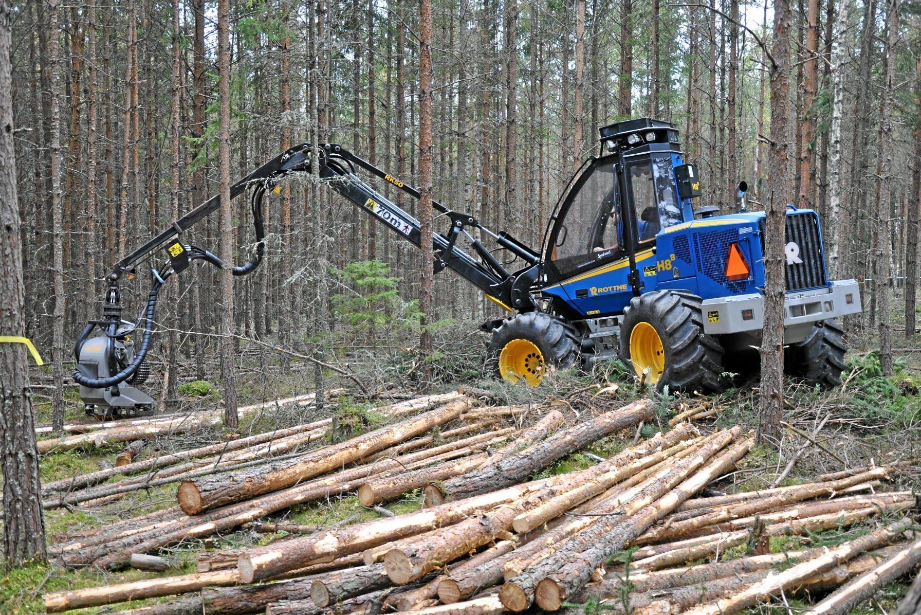 Rottne SMV varslar 33 av 56 anställda vid fabriken i Forsvik, Stensele.