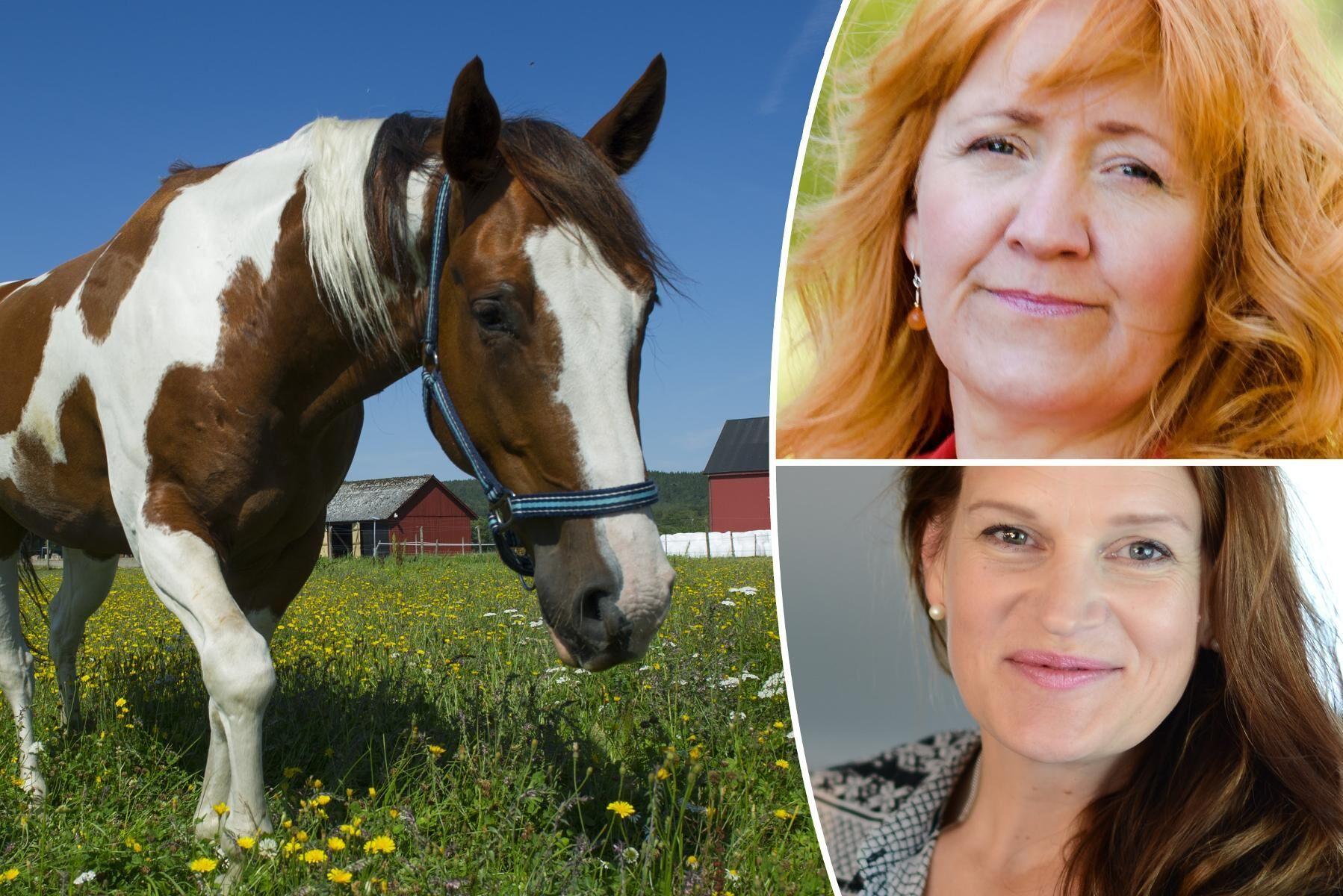 Ann-Christin L Frickner och Anna Gunstad Bäckman ingår i Centerpartiets hästnätverk.