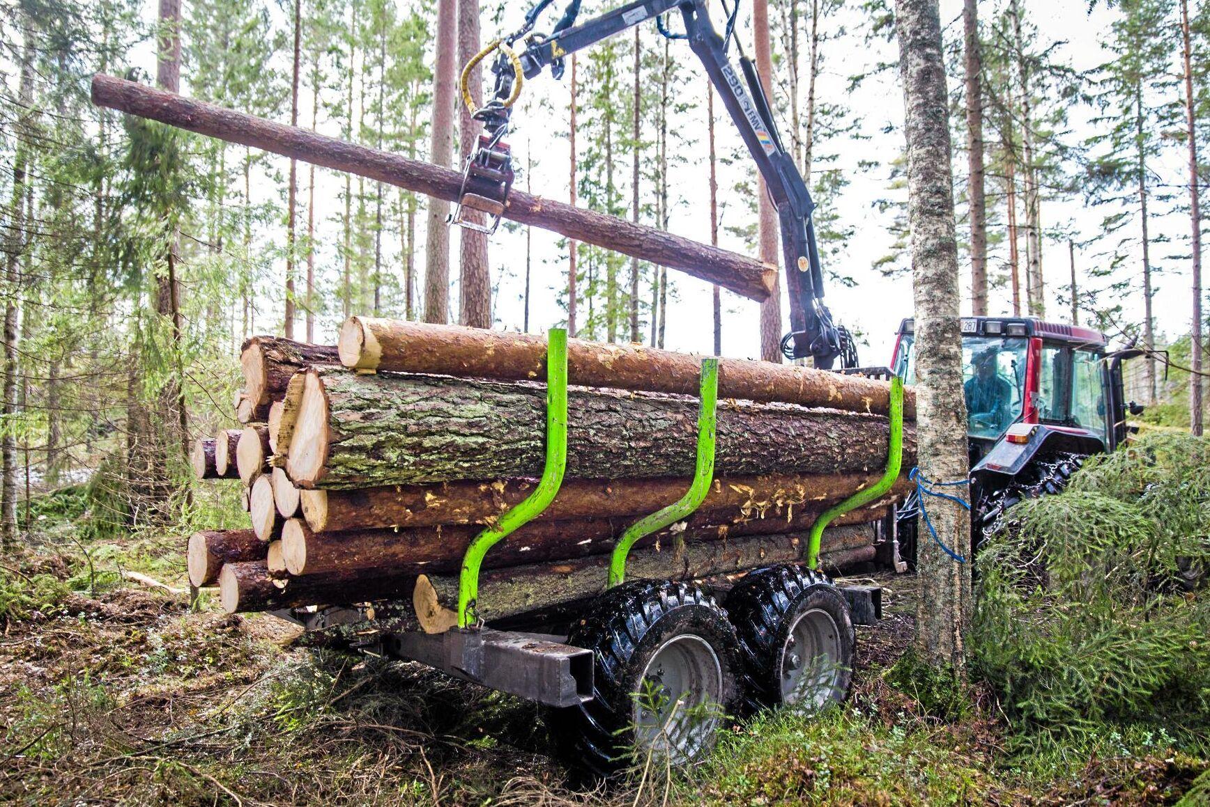 När EU-parlamentet röstar om LULUCF-reglerna kan det innebära att medlemsländerna får ett avverkningstak för skogsbruket, något som flera svenska EU-parlamentariker och LRF är kritiska till.