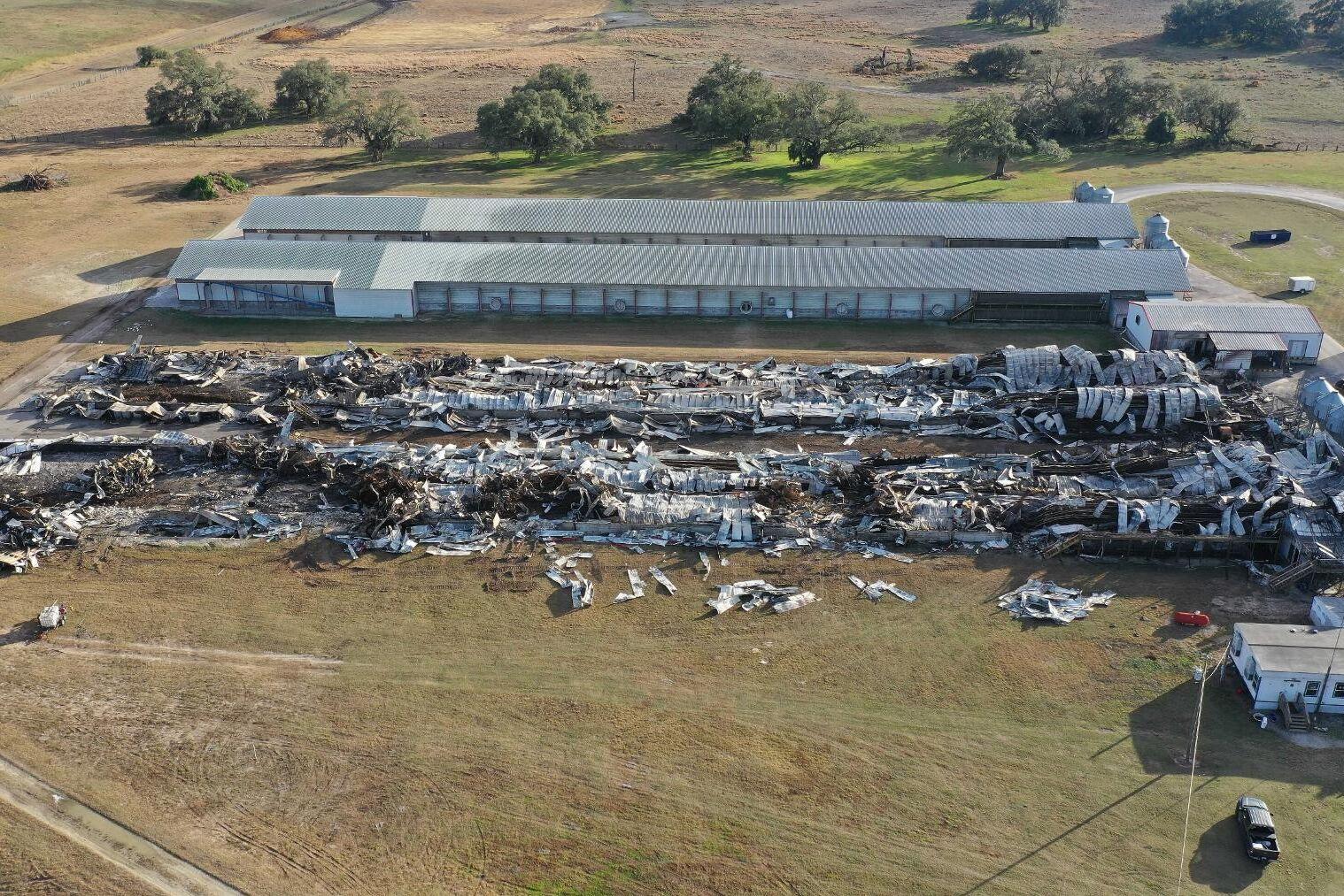 Minst 240 000 kycklingar och värphöns blev innebrända när Cal-Maine Foods anläggning i Florida eldhärjades under torsdagen.