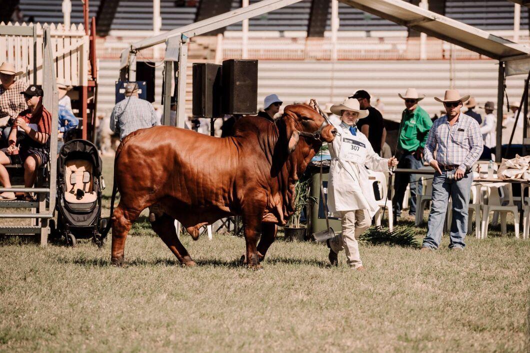 115866 personer besökte Beef Australia när mässan hölls 2–8 maj.