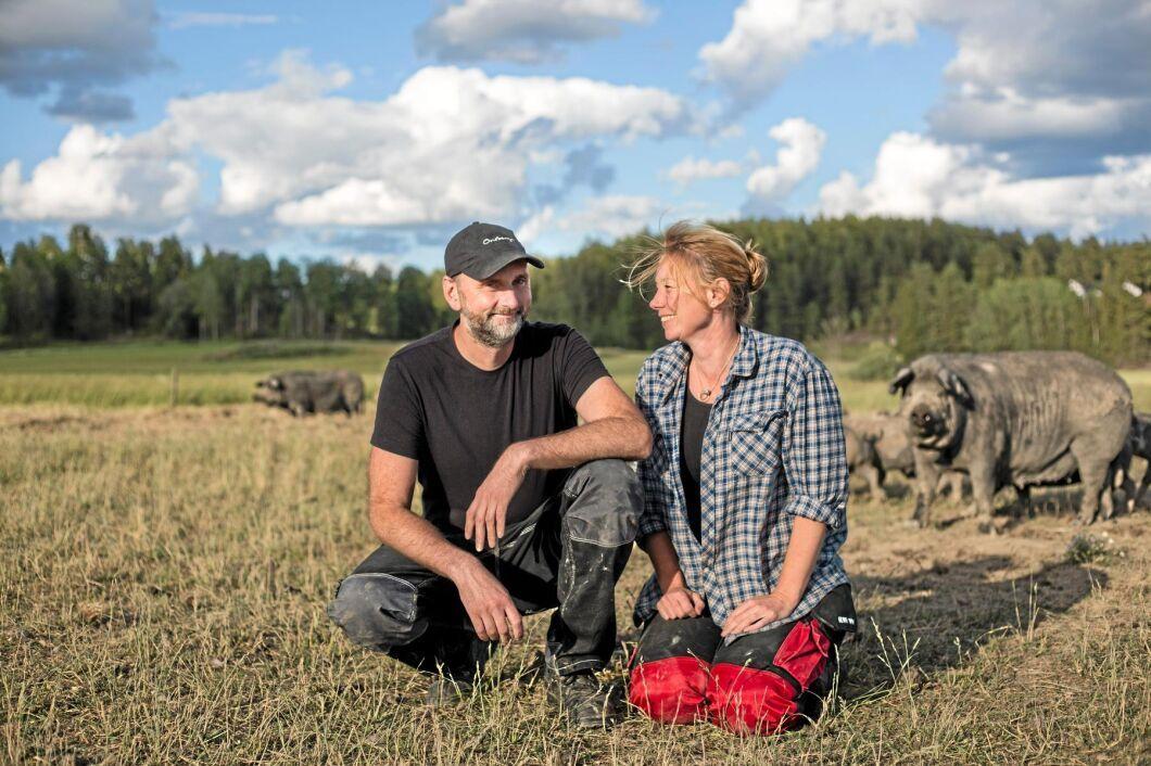 Erika Olsson är ekobonde och driver Onsberga gård i Sörmland tillsammans med sin man Torbjörn.