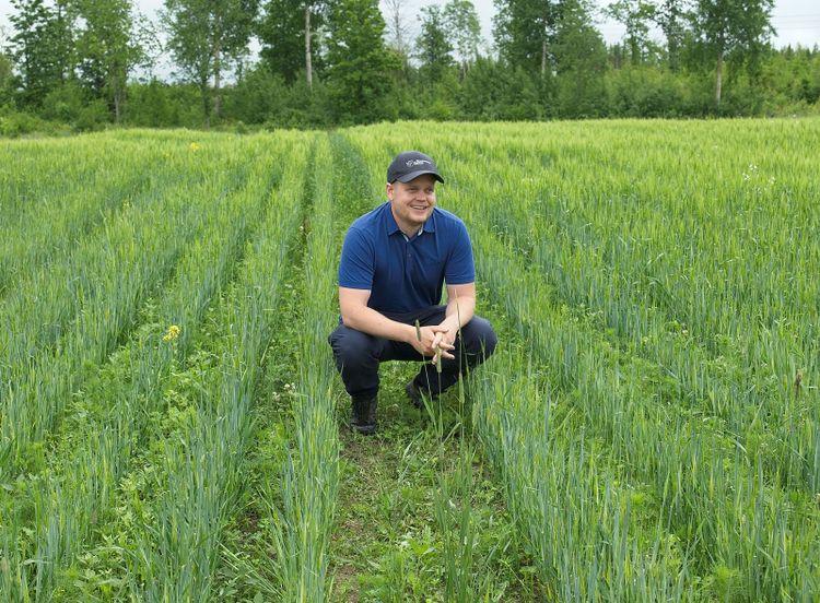 Oskar Gustafsson, produktchef på Scandinavian Seed, sitter på ett fält där det odlas höståkerböna.