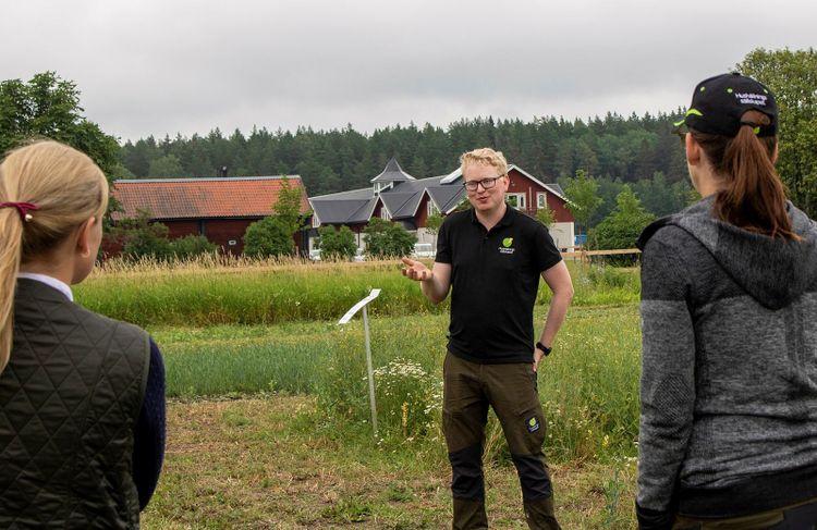 Brunnby lantbrukardagar 2021. Gunnar Cederberg från Hushållningssällskapet visar upp odlingen av raps. Två besökares ryggtavlor syns i bild.