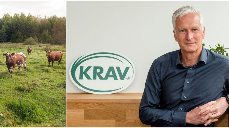Ny hållbarhetsrankning från Krav: Värmland i topp