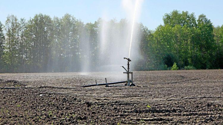 Låga grundvattennivåer nu ännu lägre