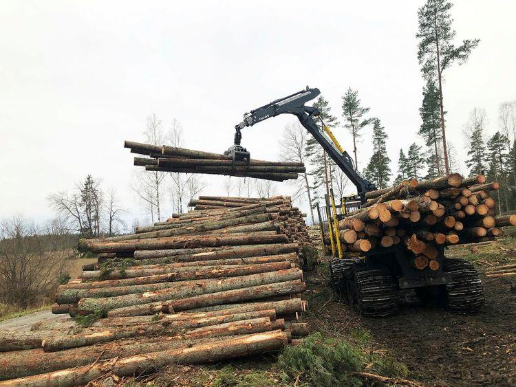 Skogsmaskin lyfter virke i skog.