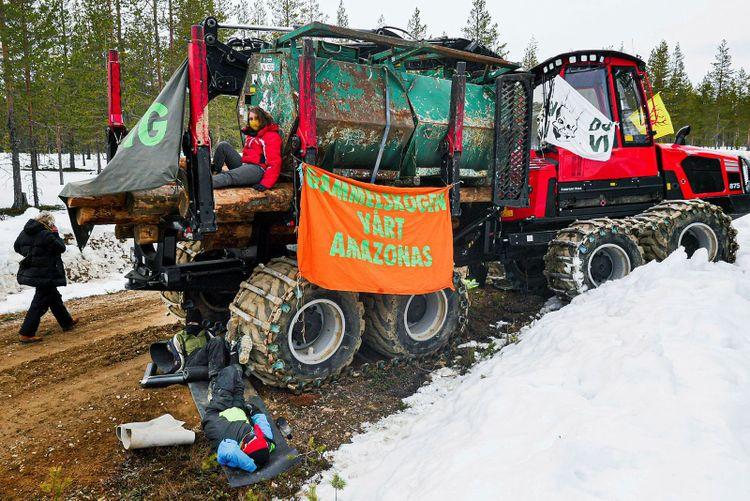 Aktivister på skogsmaskiner med banderoller protesterar i skogen.