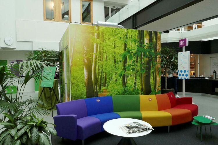 Soffa och inrett skogsrum i offentlig lokal.