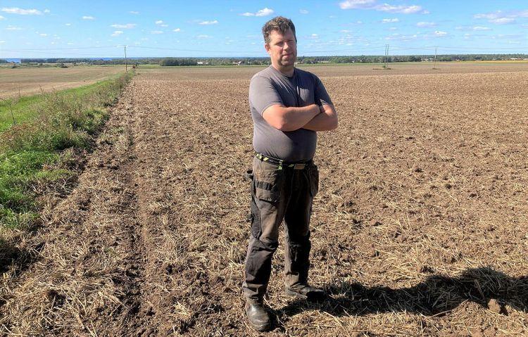 Emil Petersson på vetefält.