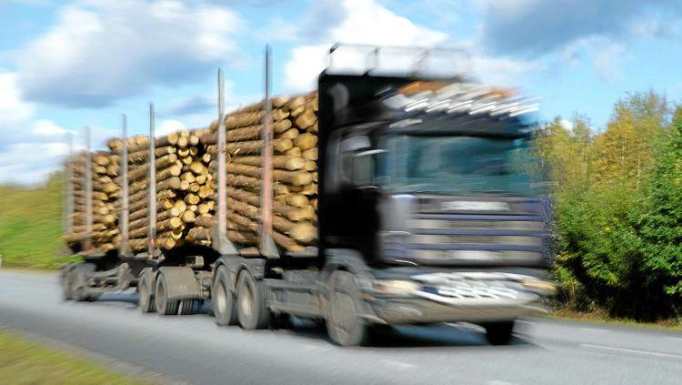 Virkesbil timmerbil lastbil långtradare väg virkestransport timmertransport