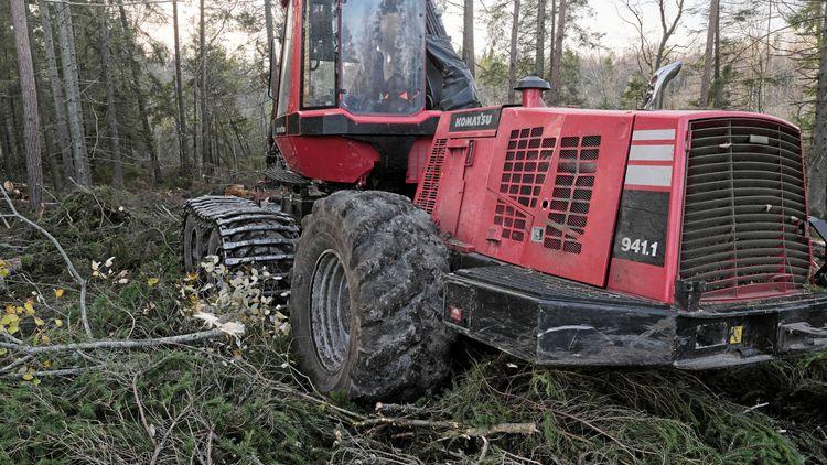 """""""Risk att unga nobbar pressad skogsmaskinsbransch"""""""