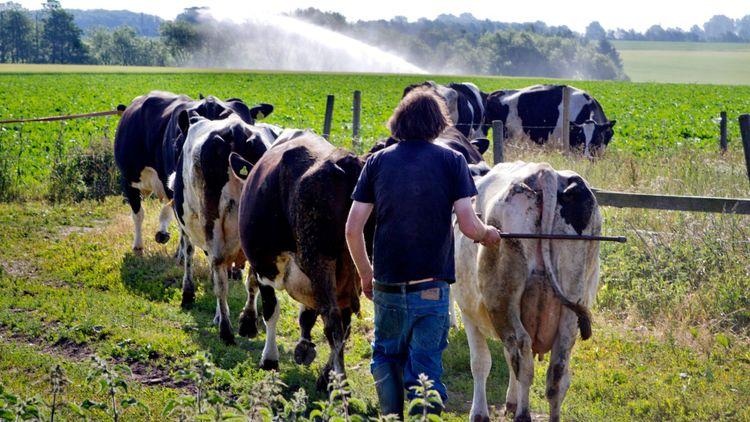"""""""Sök utbildningar för jobb i lantbruket"""""""