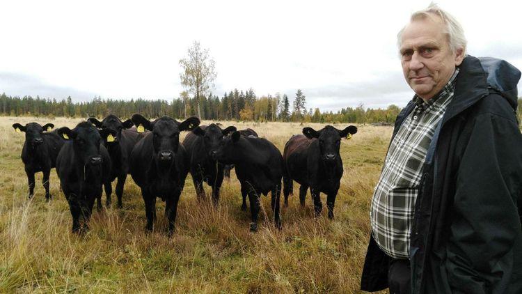 Han lämnade lärarjobbet för att satsa på naturbeteskött